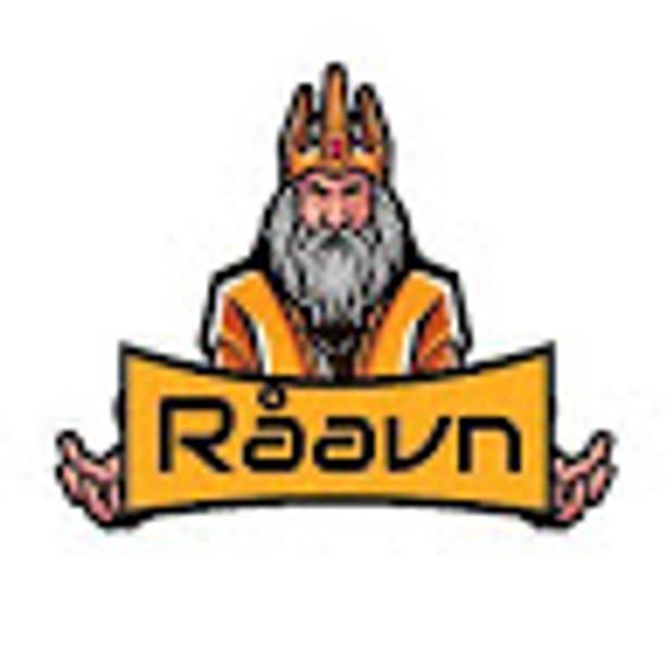 DJ Råavn